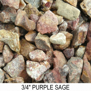 Purple Sage 3/4