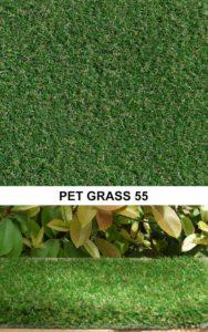Pet Grass 55