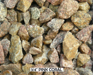 Pink Coral