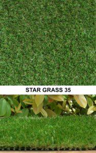 Star Grass 35